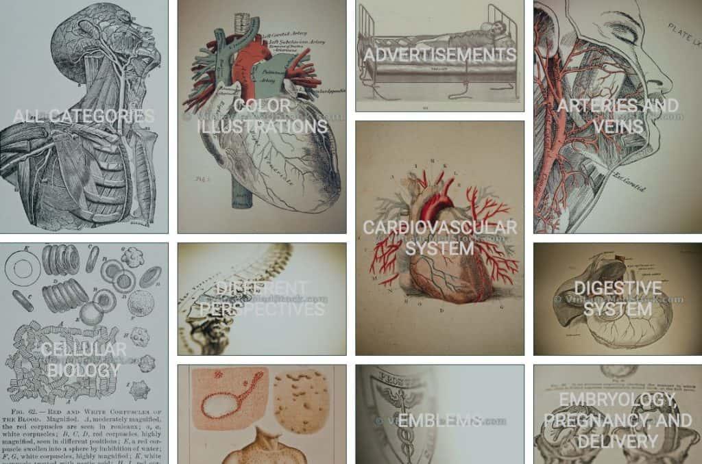 Vintagemedstock screenshot historisch medisch beeldmateriaal